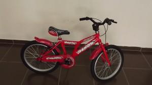 geroni 20 jant çocuk bisikleti,çocuk bisikleti,kız bisikleti,bayan bisikleti,V fren sistemli bisiklet,en ucuz bisiklet,en rahat bisiklet,en kaliteli bisikleti,vitessiz bisiklet,plastik çamurluklu bisiklet,zincir muhafazalı bisiklet,geroni bisiklet,taşpınar bisiklet,bmx bisiklet,